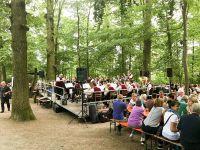 170626_Waldfest_Hoefingen07